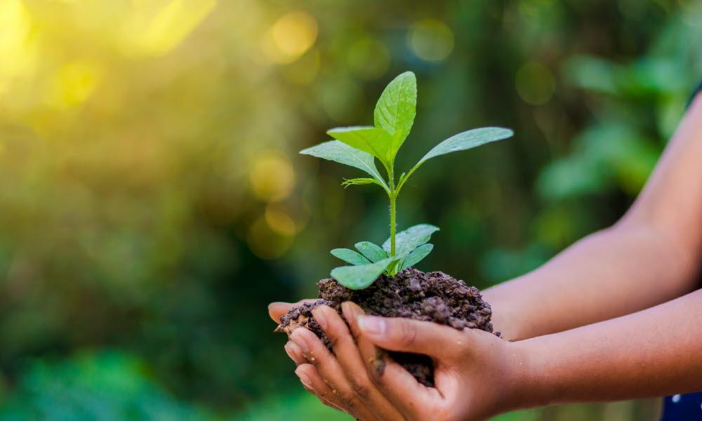 Kommunesektorens løft for bærekraft - KS